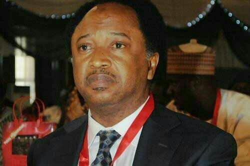 Shehu Sani VowsToFight AgainstControversial NGO Bill